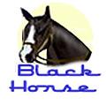 Игровой автомат Черная Лошадь