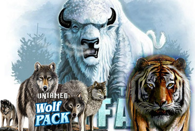White Buffalo, Untamed Wolf Pack и Untamed Bengal Tiger