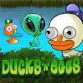 Ducks n Eggs