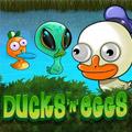 Ducks n Eggs