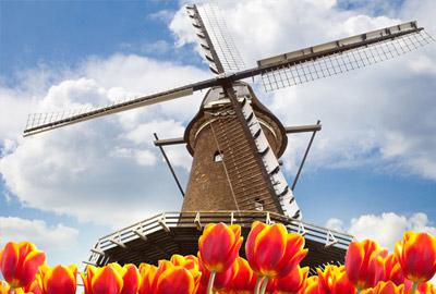 Новые голландские правила азартных игр – спусковой крючок для операторов