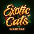 Онлайн слот Exotic Cats