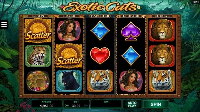 Игровой автомат Exotic Cats